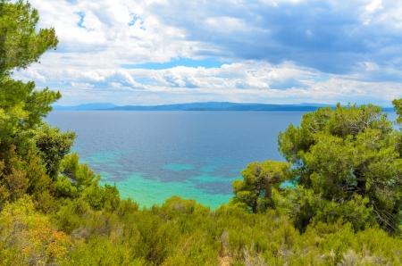 skiathos: Beautiful blue sea behind conifers against cloudy sky
