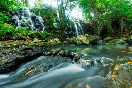 Waterfall in the rain forest with rapids flowing down stream in the foreground - nature and great outdoors landscape image