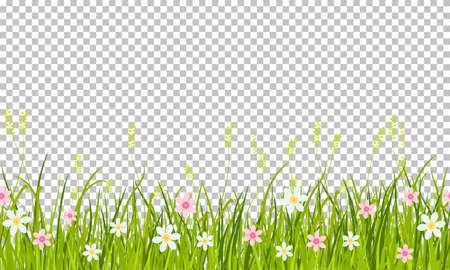 Spring grass and flowers border, Easter greeting card decoration element, illustration isolated on transparent background Ilustración de vector