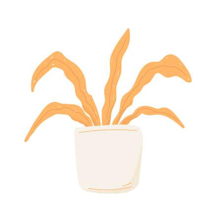 Trendy potted plants, hand drawn decorative houseplants