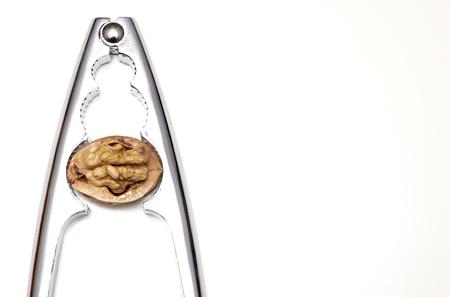 Walnut cracker detail Фото со стока