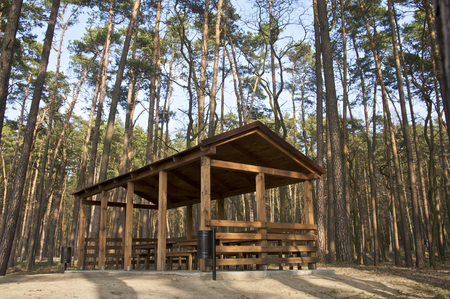 Wooden sheltered terrace in the middle of Polish woods Фото со стока