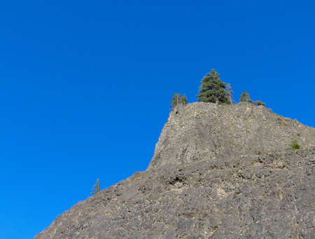 capping: a majestic mountain peak, with several pine trees capping it