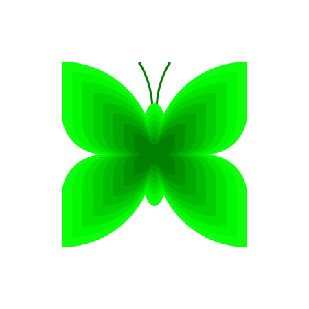 Green butterfly on white background vector.