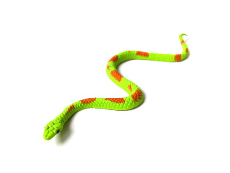 Close up of green snake toy isolated on white background.