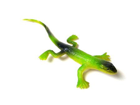 Close up of green rubber lizard toy isolated on white background. Reklamní fotografie