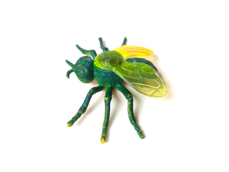 Close up of green fly insect toy isolated on white background. Stock Photo