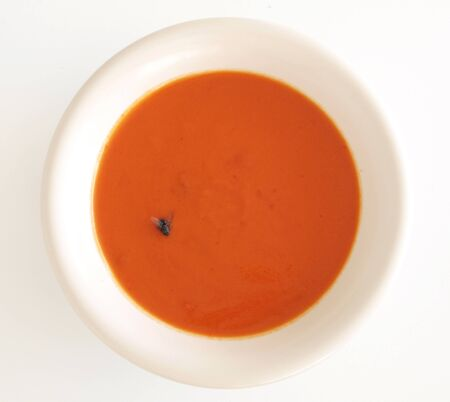 fly in soup Stock Photo