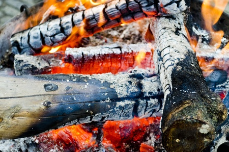 Open fire with hot burning charcoal and wood Stock Photo - 21694608