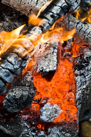 Open fire with hot burning charcoal and wood Stock Photo - 21694609