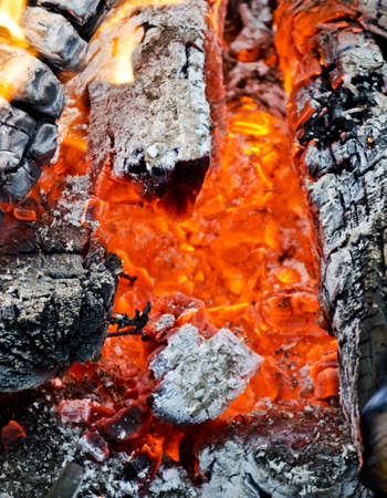 Open fire with hot burning charcoal and wood photo