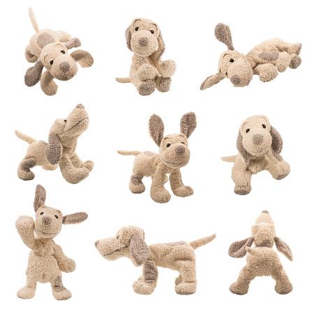 position d amour: Ensemble de positions de chien ours en peluche