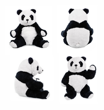 Teddy panda bear  Stuffed animal posing  photo
