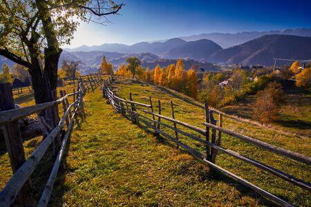 paisaje rural: Otoño en el campo con árboles de colores y valla.