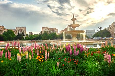 Bukarest. Piata Unirii, Bucuresti Standard-Bild