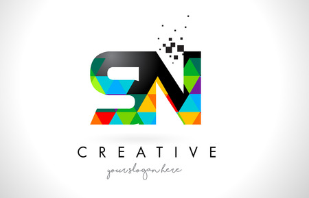 SN S N Letter Logo with Colorful Vivid Triangles Texture Design Vector Illustration.