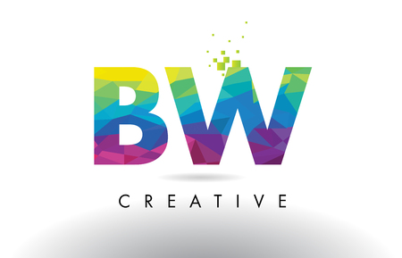 BW B W Colorful Letter Design with Creative Origami Triangles Rainbow Vector.