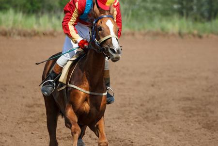 Race horse in run. Running horse with a jockey.