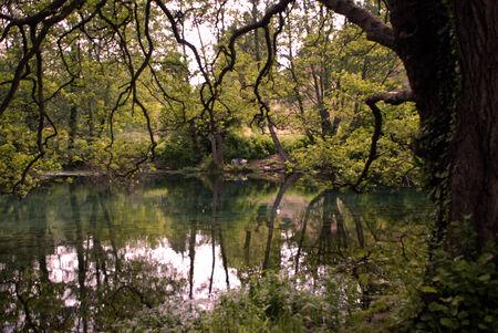 diversity of the region: Landscape in spring Landscape in Macedonia