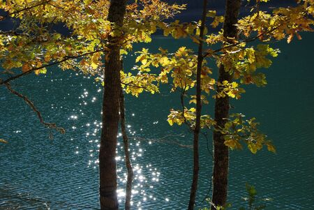 diversity of the region: Autumn landscape by the lake Stock Photo