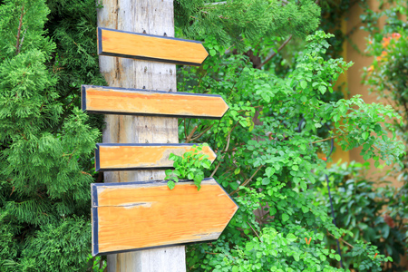 wooden trail sign: Empty wooden sign boards pointing to the same direction in green forest trail background