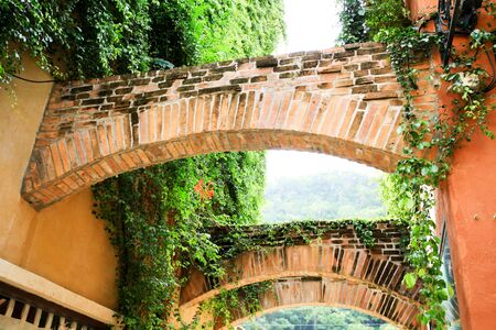 italian architecture: Italian architecture covered by green natural vines and leaves