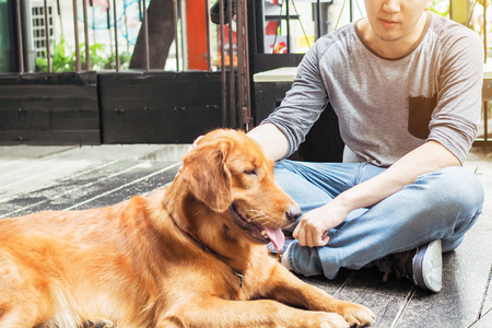Unrecognizable man rubbing his dog with care and love in outdoor scene Stock Photo