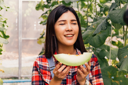 Young beautiful Asian female fruit vegetable country farmer having a slice of melon and smell the taste in watermelon farm field