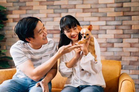 Jonge Aziatische mannelijke en vrouwelijke eigenaren van gezelschapsdieren spelen met Chihuahua-hond in de woonkamer binnenshuis. Ze zitten allebei op de bank en spelen graag met de hond. Modern paarlevensconcept