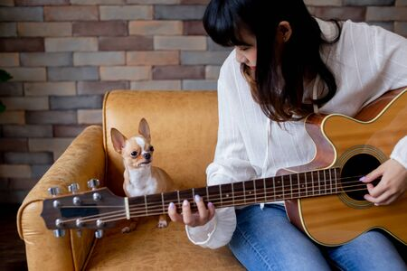 Young smiling Asian woman playing guitar while sitting on sofa with chihuahua dog at home