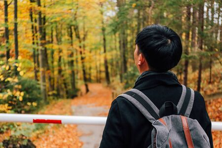 Back view portrait of young male Asian tourist in Germany, Europe during autumn fall season with colorful yellow forest of trees