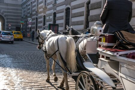 Old horse carriage for tourists driven by crop male on paved street with ancient stone buildings in Vienna Austria Stock fotó