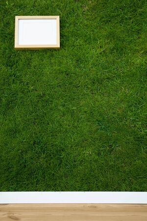 natural wallpaper with grass texture and an empty frame Stock Photo - 3763026