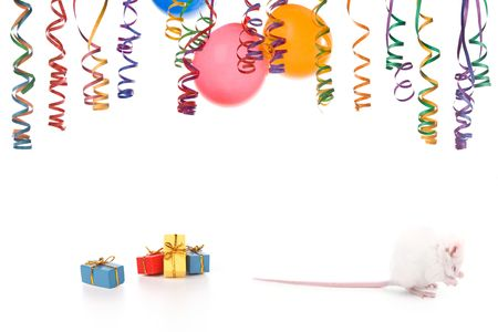 mouse having a party .isolated on a white background Stock Photo - 4032124