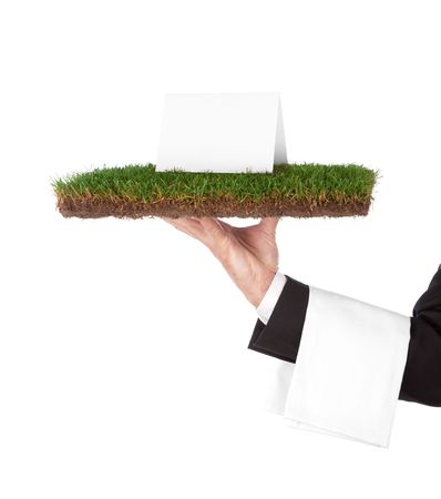 kelner met een dienblad met gras, groen biologische concept