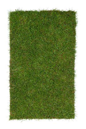 stukje gras geïsoleerd op een witte achtergrond  Stockfoto