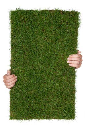 twee handen een stuk van gras, geïsoleerd op witte achtergrond
