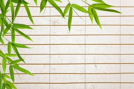 rice paper  blinds with bamboo-leaves photo