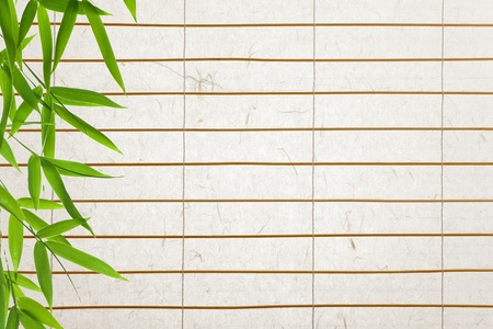 rice paper  blinds with bamboo leaves photo