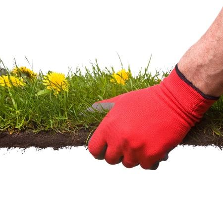 houdt een stuk van gras, metafoor voor tuinieren of het creëren van een tuin