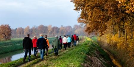 groep van senior wandelaars doen buitensporten