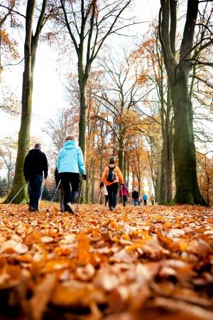 senioren wandelen: groep van senior wandelaars doen buitensporten