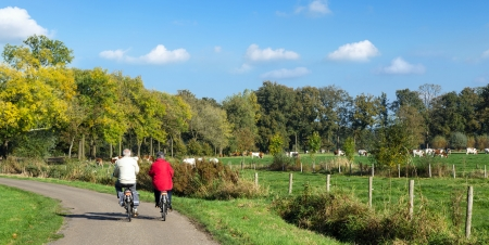 Senior man and woman exercising with bicycles on a countryroad 스톡 콘텐츠