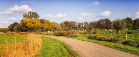 noord brabant: Dutch landscape with road and meadow. brabant netherlands Stock Photo