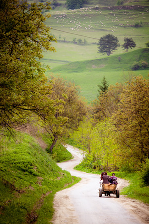horse cart: three Farmers on old wooden cart on their way in Transylvania Romania