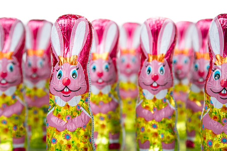 Chocolate Easter bunny figure. Easter chocolate rabbit figurines Stockfoto