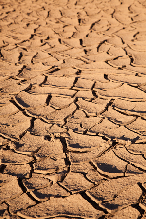 Dry land. cracked brown orange dirt background.Evening sunlight Stockfoto