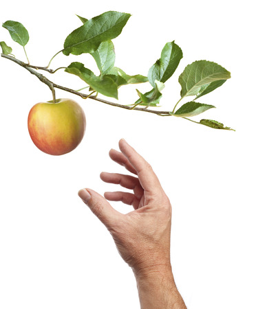 Een appel plukken. Mannelijke hand komt voor een appel. Geïsoleerd op een witte achtergrond