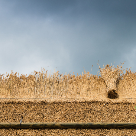 thatching a roof of a house with new straw.Thatched roof of a home Stockfoto