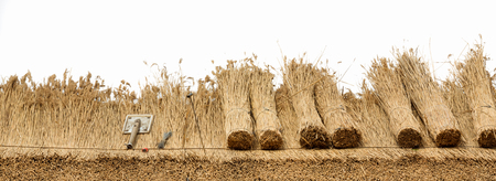 Thatched  roof of a house ,border of  straw.Isolated on a white background